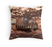 Meandering armor Throw Pillow