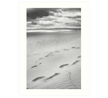 beachscape #1 Art Print