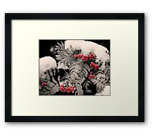 Mountain Ash [Sorbus sitchensis] Framed Print