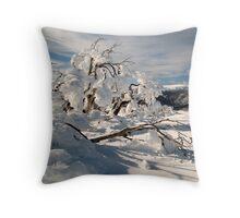 Frozen burnt snowgum Throw Pillow