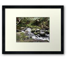 Tranquil Surrounds Framed Print