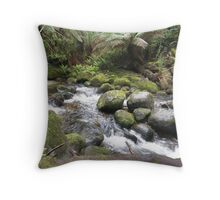 Tranquil Surrounds Throw Pillow