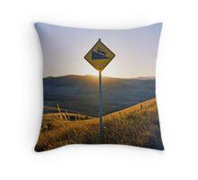 Mt Blowhard Throw Pillow