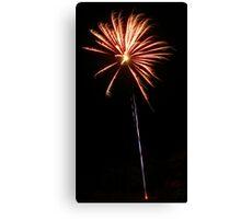 Carol's Fireworks @ Mount Barker Canvas Print