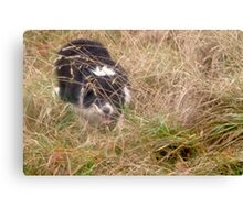 """""""Hunter in the Grass"""" Canvas Print"""