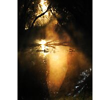 Lady in the Morning Mist... Photographic Print