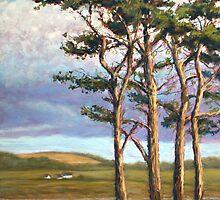"""""""Cyprus Avenue"""" by Alice McMahon"""