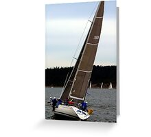Race Week Brown Greeting Card