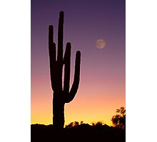 Early Morning Southwest Desert Moon Glow Photographic Print
