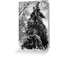 Great Grandfather Christmas Greeting Card