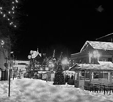 Chester City  First Snow by Harri