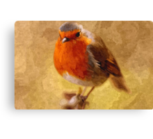 Artwork - Robin Red Breast Canvas Print