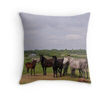 Rural Scenery Throw Pillow