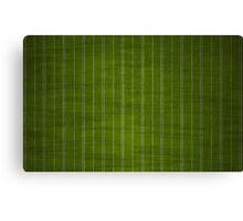 Green & Sliver PinStripes Canvas Print
