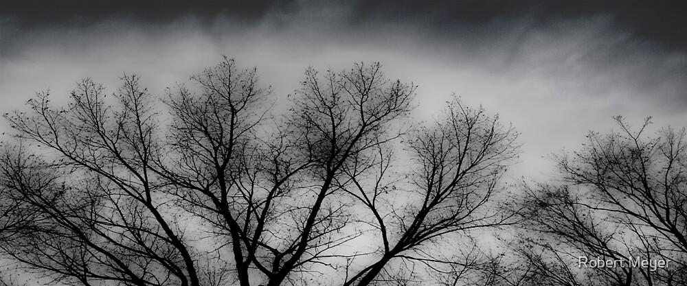 Winter Mood by Robert Meyer