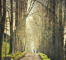 Winter walks by rentedochan