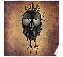 Funny Sleepy Owl Poster