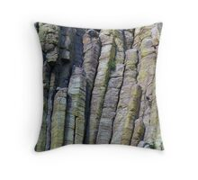 One With The Rock Throw Pillow