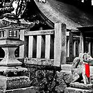 Kitsune of Takayama by cowwws