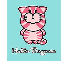 Hello Bagpuss Photographic Print