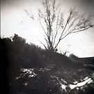 Animas River Pinhole by snorman