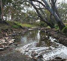 Running River by saharabelle