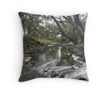Running River Throw Pillow