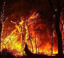 Bush Fire..... by GerryMac