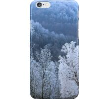 Hoarfrost iPhone Case/Skin