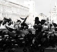 Playing in Venezia 2 by TriggerHappy