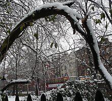 snow in london by Janis Read-Walters