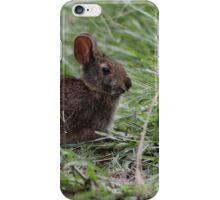 Bunny in the Marsh iPhone Case/Skin
