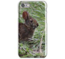 Bunny in the Marsh iPhone Case/Skin