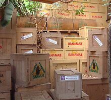 Banana Boxes by Mischa