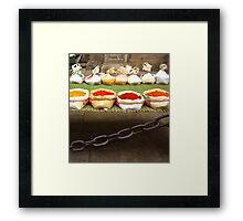 colorful spices Framed Print