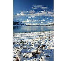 Snow on the Shore Photographic Print