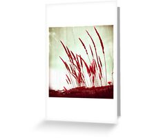 Morning Glow red Greeting Card