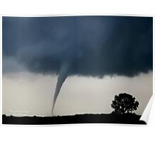 The Tornado and the Tree Poster