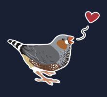 Zebra Finch Love by Danelle Malan