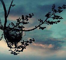 nest by KellieBee