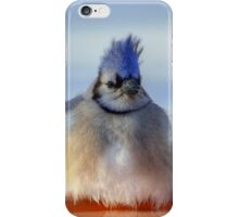 Baby it's cold our here iPhone Case/Skin