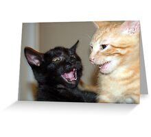 Kitty Fights Greeting Card