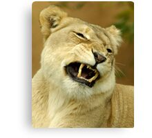 What a funny face. Canvas Print