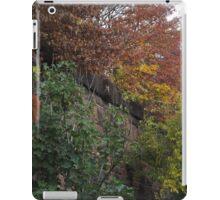 Autumn Colors, Brunswick Community Garden, Harsimus Branch Embankment, Jersey City, New Jersey iPad Case/Skin