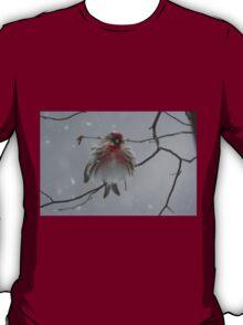 I'm so cold... T-Shirt