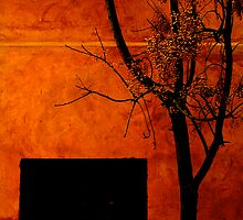 Fire storm on a wall by Grace Leung