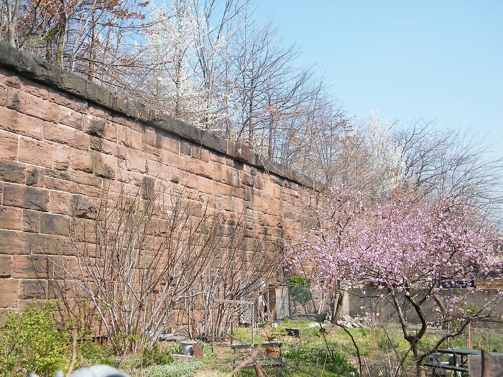 Harsimus Branch Embankment, Former Pennsylvania Railroad Embankment , Jersey City, New Jersey  by lenspiro