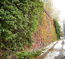 November Sixth Street Embankment, Abandoned Pennsylvania Railroad Embankment , Jersey City, New Jersey  by lenspiro