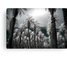Reality Break Canvas Print