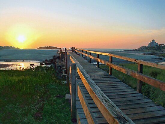 Bridge to Paradise by Judith Winde